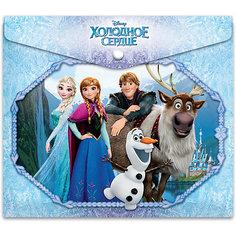 Папка для российских тетрадей Disney Frozen Limpopo