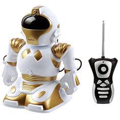 """Радиоуправляемый робот Mioshi """"Robokid"""""""