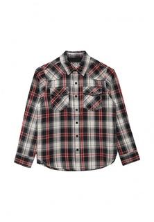 Рубашка Losan