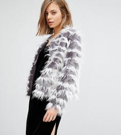 Джинсовая куртка без воротника Unreal Fur Dream - Серый
