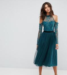 Платье миди для выпускного с отделкой тюлем ASOS TALL PREMIUM - Зеленый