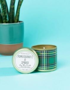 Маленькая свеча с ароматом граната и ели в контейнере с принтом в клетку тартан Paddywax - Мульти
