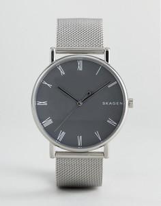 Часы с серебристым сетчатым браслетом Skagen SKW6428 - Серебряный