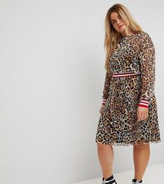 Сетчатое платье миди с леопардовым принтом и отделкой в рубчик ASOS CURVE - Мульти
