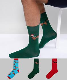 Подарочный набор новогодних носков с таксами (3 шт.) ASOS - Мульти