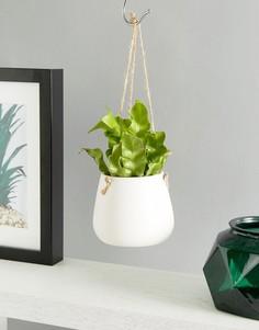 Белый керамический подвесной горшок для цветов Sass & Belle - Мульти