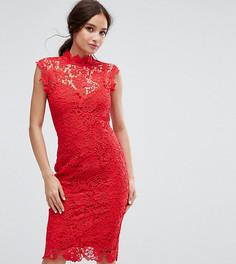 Кружевное платье-футляр с высоким воротом Paper Dolls - Красный
