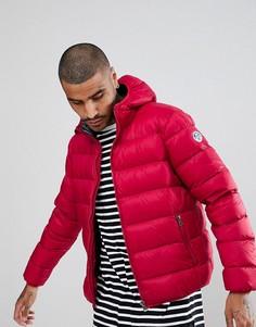 Красная дутая куртка с капюшоном North Sails - Красный