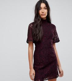 Кружевное платье Fashion Union Tall - Мульти