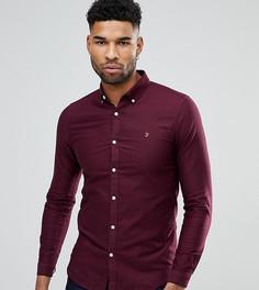 Бордовая приталенная оксфордская рубашка на пуговицах Farah TALL - Красный