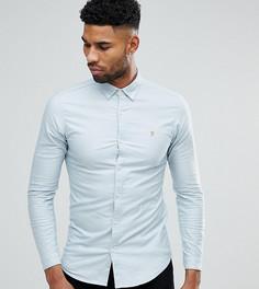Светло-голубая приталенная оксфордская рубашка на пуговицах Farah TALL - Красный