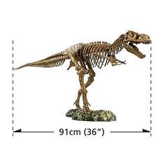 Набор скелет динозавра 91см, Edu-Toys