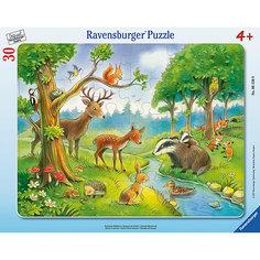 """Пазл """"Лесные животные"""" 30 шт Ravensburger"""