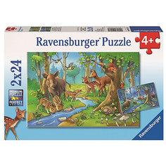 Пазл «Лесные жители»  2х24шт Ravensburger