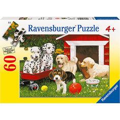 Пазл «Собаки в саду» 60 шт Ravensburger