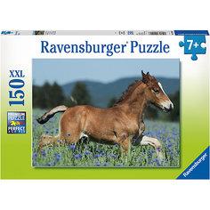 Пазл «Молодая лошадь» XXL 150 шт Ravensburger