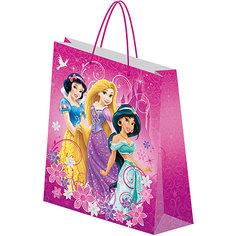 Пакет подарочный, Princess Академия групп