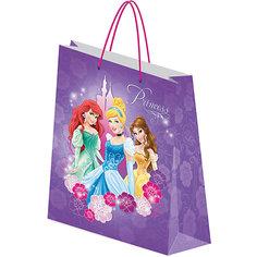 Пакет подарочный.Princess Академия групп