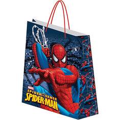 Пакет подарочный,  Spider-man Академия групп