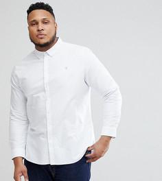 Белая приталенная оксфордская рубашка Farah PLUS Brewer - Белый