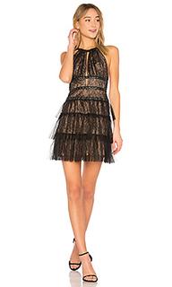Hilaria short halter dress with gromme in black - BCBGMAXAZRIA