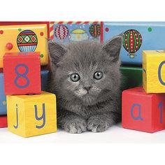 Пазл светящийся «Котенок с кубиками» XXL 200 шт Ravensburger