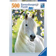 Пазл «Грациозная белая лошадь» 500 шт Ravensburger