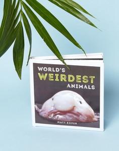 Книга Worlds Weirdest Animals - Мульти Books