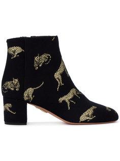 жаккардовые ботинки с принтом больших кошек Brookling Aquazzura