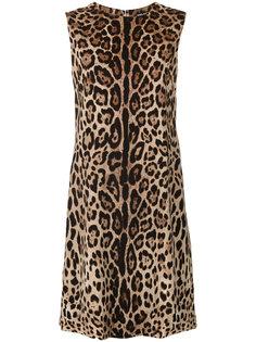 платье-шифт с леопардовым принтом Dolce & Gabbana