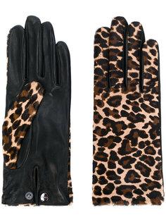 леопардовые перчатки Agnelle
