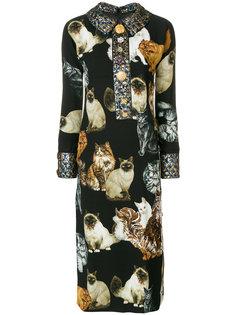 платье с принтом котов Dolce & Gabbana