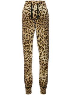 спортивные брюки с леопардовым принтом Dolce & Gabbana