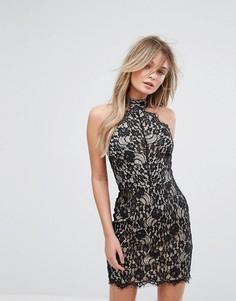 Облегающее кружевное платье с чокером New Look - Черный