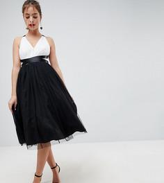 Платье миди для выпускного с юбкой из тюля и ленточной завязкой ASOS PETITE PREMIUM - Мульти