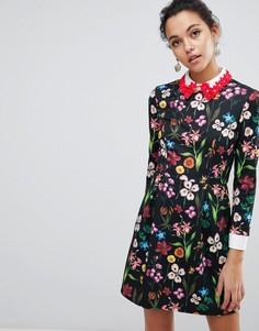 Короткое приталенное платье с декорированным воротником Ted Baker Tillena - Мульти