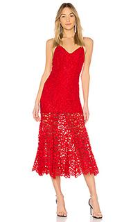 Кружевное миди платье brielle - NBD