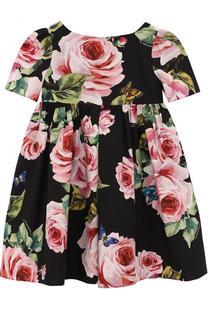 Хлопковое платье с завышенной талией с принтом Dolce & Gabbana