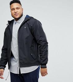 Черная легкая куртка с капюшоном Original Penguin PLUS - Черный