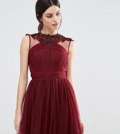 Короткое приталенное платье с цветочным кружевом Little Mistress Petite - Красный