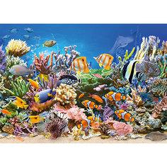 Пазл Цвета океана, 260 деталей MIDI Castorland
