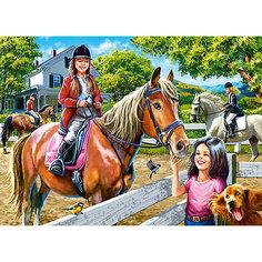 Пазл Верховая езда, 300 деталей, Castor Land Castorland