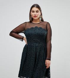 Короткое приталенное платье из кружева и сетки добби ASOS CURVE - Черный