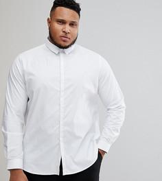Приталенная рубашка со скрытой планкой Noak PLUS - Белый
