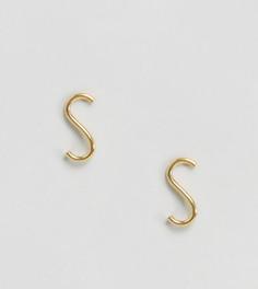 Серьги-гвоздики из позолоченного серебра ASOS - Золотой