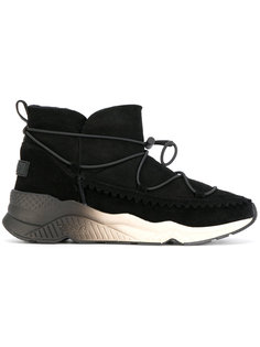 ботинки на шнуровке Ash