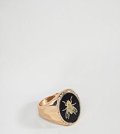 Кольцо-печатка с насекомым ASOS PLUS - Золотой