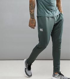Суженные книзу эластичные брюки цвета хаки Canterbury эксклюзивно для ASOS - Зеленый