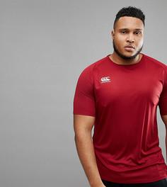 Бордовая футболка Canterbury PLUS Vapordri эксклюзивно для ASOS - Красный