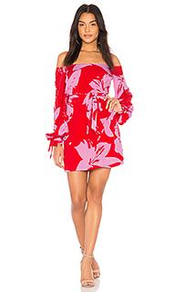 Платье dariela - Bardot